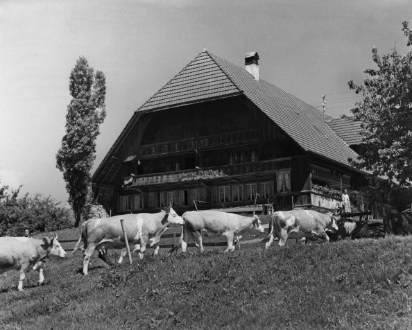 Chalet「Swiss Farmhouse」:写真・画像(7)[壁紙.com]