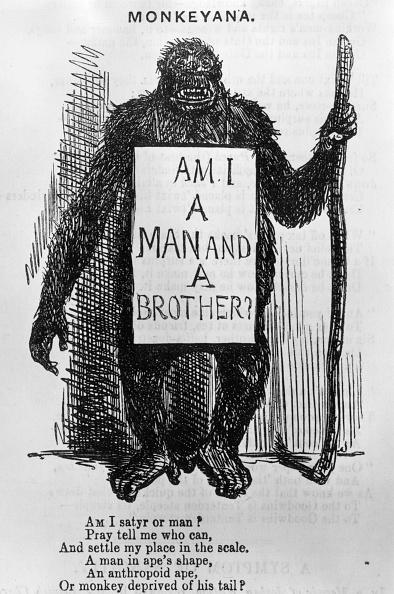 Biology「Monkeyana」:写真・画像(10)[壁紙.com]