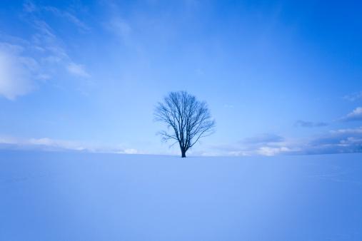 Biei Town「Snowy field.」:スマホ壁紙(7)