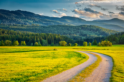 European Alps「Alpine mountain landscape with the green meadow (HDRi)」:スマホ壁紙(0)
