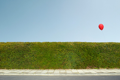 Hedge「Red balloon floating over neatly trimmed hedges」:スマホ壁紙(0)