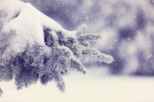 結晶「冬の日」:スマホ壁紙(15)