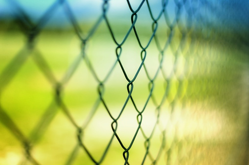 Chainlink Fence「Close-up section of a chain-link fence with field behind it」:スマホ壁紙(12)