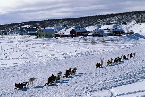 Reindeer Sledding「Reindeer Pulling Sleds」:スマホ壁紙(10)