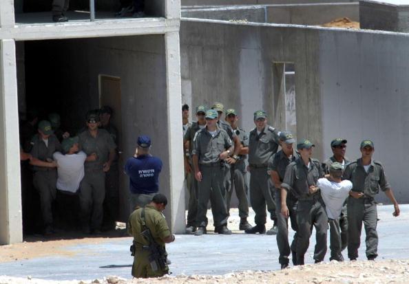 Tse - Designer Label「Israeli Soldiers Rehearse For Gaza Evictions」:写真・画像(17)[壁紙.com]