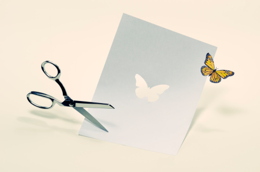 New Life「Butterfly cut from paper」:スマホ壁紙(19)