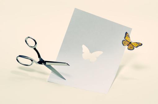 New Life「Butterfly cut from paper」:スマホ壁紙(18)