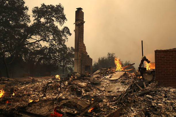 カリフォルニア州「Multiple Wildfires Destroy Homes, Threaten California Wine Country」:写真・画像(8)[壁紙.com]