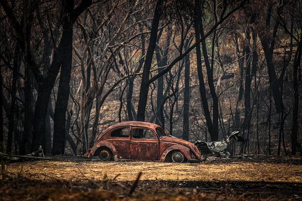 オーストラリア「Bushfire Conditions Expected To Worsen With Extreme Heat And Wind Forecast In NSW」:写真・画像(5)[壁紙.com]