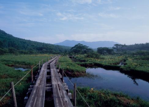 Tochigi Prefecture「Numappara Marsh, Nasushiobara, Tochigi, Japan」:スマホ壁紙(17)