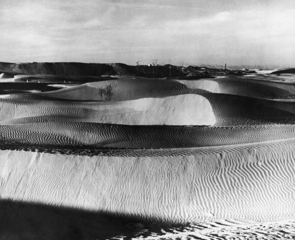Big Cat「Death Valley」:写真・画像(14)[壁紙.com]