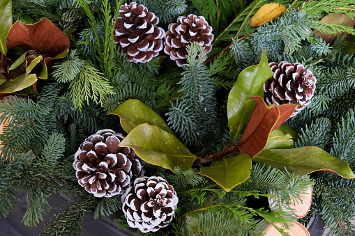 Pine Cone「Pinecones and greenery」:スマホ壁紙(1)