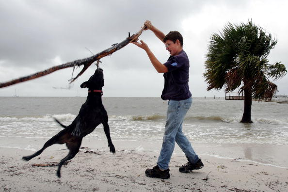 Horizon Over Water「Damage Minimal As Tropical Storm Alberto Hits Florida」:写真・画像(2)[壁紙.com]