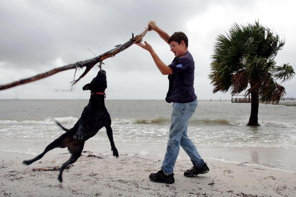 Overcast「Damage Minimal As Tropical Storm Alberto Hits Florida」:写真・画像(7)[壁紙.com]