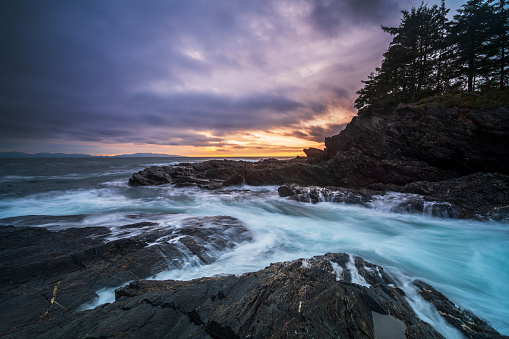 Eco Tourism「Vancouver Island Landscapes」:スマホ壁紙(5)