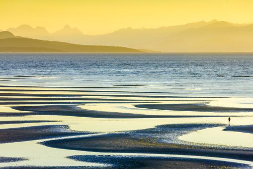 Ecosystem「Vancouver Island British Columbia」:スマホ壁紙(9)