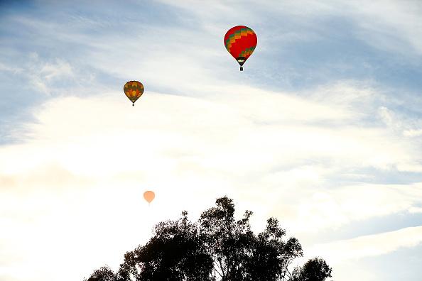 Hot Air Balloon「Balloons Over Waikato 2017 - The Hamilton Mass Ascension」:写真・画像(4)[壁紙.com]