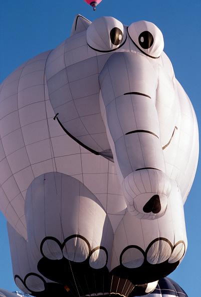 Vaud Canton「Chateau d'Oex Balloon Festival」:写真・画像(2)[壁紙.com]
