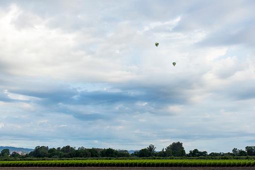 気球「Hot air balloons flying over rural landscape」:スマホ壁紙(8)