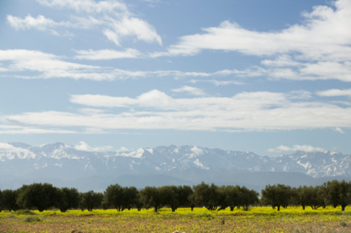 Atlas Mountains「Morocco, Ourika Valley, High Atlas Mountains in background」:スマホ壁紙(7)