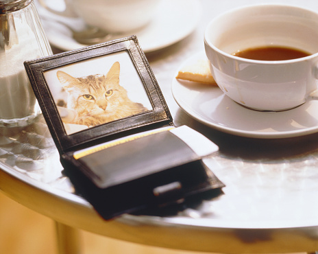 Souvenir「Wallet with photograph of cat lying on a table」:スマホ壁紙(19)