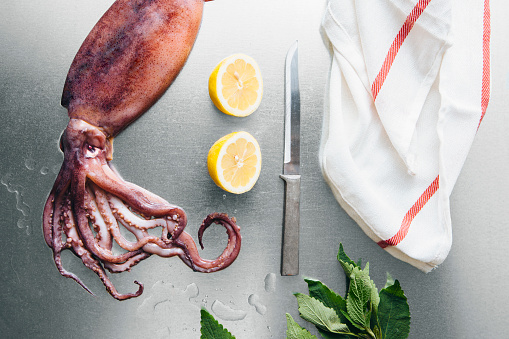 Cephalopod「Squid, lemon and herbs on metal tabletop」:スマホ壁紙(17)