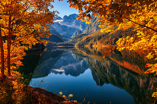 Dachstein Mountains「Autumn on lake Gosau (Gosausee) in Salzkammergut, Austria」:スマホ壁紙(8)