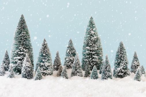 雪「Pine trees covering by snow, studio shot」:スマホ壁紙(2)