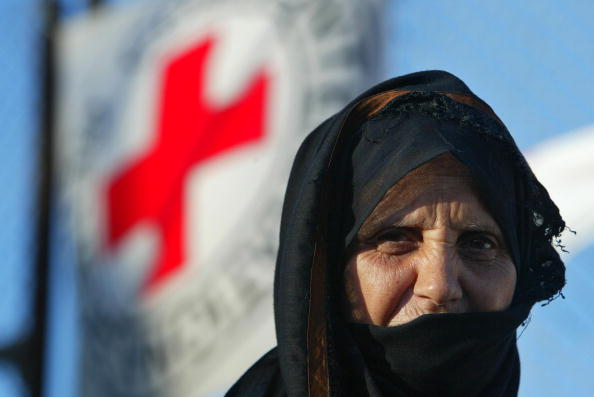 Focus On Foreground「Homeless Palestinians Receive Aid From Red Cross and Red Crescent Aid Distribution Center」:写真・画像(9)[壁紙.com]