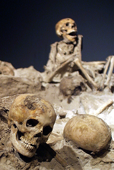 Active Volcano「National Archaeological Museum Opens Vesuvius Exhibit」:写真・画像(4)[壁紙.com]