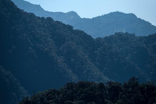 Amazon Rainforest「Cloud Forest scenic」:スマホ壁紙(13)