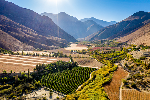 チリ共和国「Farmland in the Elqui Valley」:スマホ壁紙(7)
