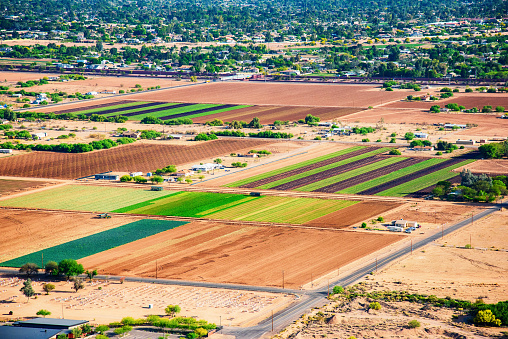 Farm「Farmland in Arid Arizona Climate」:スマホ壁紙(15)