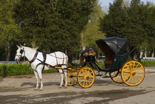 Horse-drawn carriage「Horse and carriage」:スマホ壁紙(8)