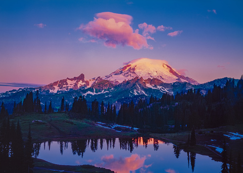 Volcanic Landscape「Spring morning in the Cascade Range with reflection of Mount Rainier, WA」:スマホ壁紙(13)