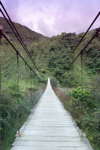 Amazon Rainforest「Ecuador, Banos, footbridge over Rio Pastaza River」:スマホ壁紙(15)