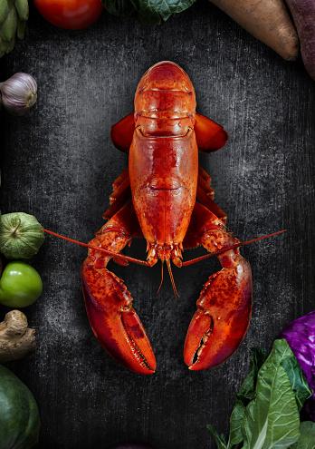 Gray Background「Lobster」:スマホ壁紙(17)