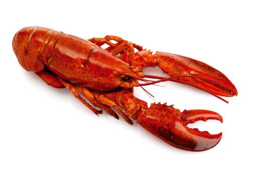 Eating「Lobster」:スマホ壁紙(2)