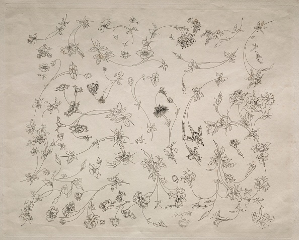 Etching「Flower Designs For Plates And Borders (No. 14)」:写真・画像(10)[壁紙.com]