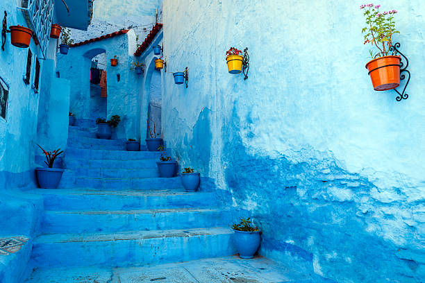 Blue staircase & colourful flowerpots, Chefchaouen,Morocco,North Africa:スマホ壁紙(壁紙.com)