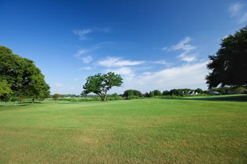 公園「ゴルフのフィールド」:スマホ壁紙(15)
