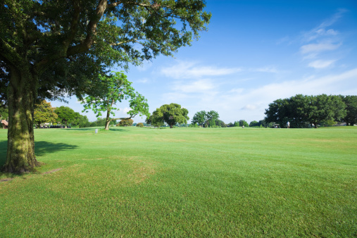Natural Parkland「Golf Fields」:スマホ壁紙(1)