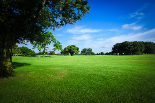 Front or Back Yard「Golf Fields」:スマホ壁紙(4)