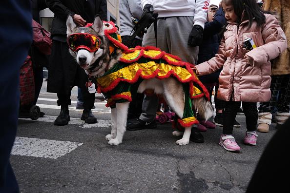 お祭り「New York's Annual Lunar New Year Day Parade Winds Through Chinatown」:写真・画像(15)[壁紙.com]
