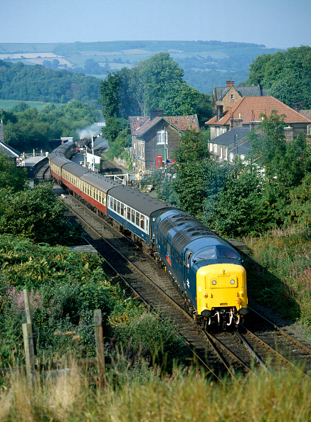 熱帯魚「North Yorkshire Moors Railway. No.55019 'Royal Highland Fusilier' leaves Grosmont with the 15.55 service for Pickering. 30th August 1983.」:写真・画像(2)[壁紙.com]