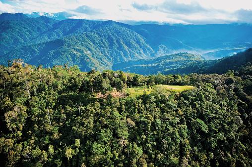 Rolling Landscape「The Kokoda Trail」:スマホ壁紙(13)