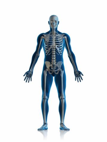 Shoulder「Skeleton man」:スマホ壁紙(18)