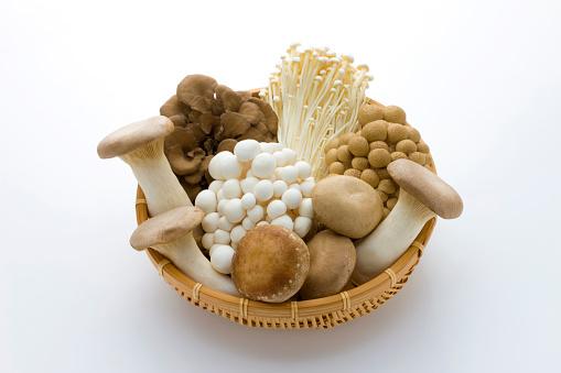 シイタケ「Mushrooms」:スマホ壁紙(18)
