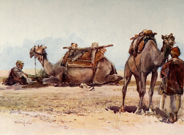 Tradition「Study Of Camels And Attendants」:写真・画像(5)[壁紙.com]