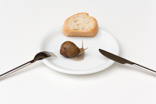 snails「Snail Crawling on White Plate with Bread, Fork and Knife」:スマホ壁紙(13)